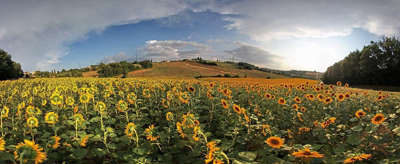 Toscana italien panorama auf leinwand